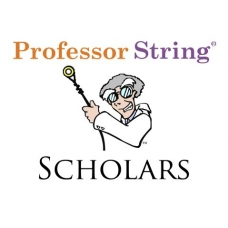 Scholars Guitar Strings .012